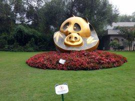 Giant Panda Research Centre (3)