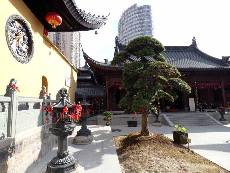 Jade Buddha Temple (11)