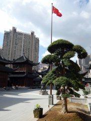 Jade Buddha Temple (28)