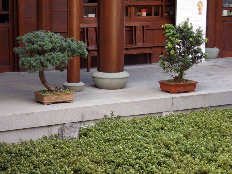 Jade Buddha Temple (30)