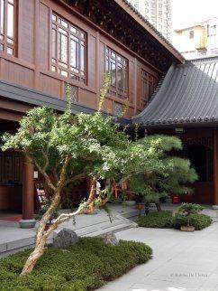 Jade Buddha Temple (31)