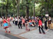 People's Park (2)