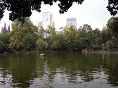 People's Park (9)