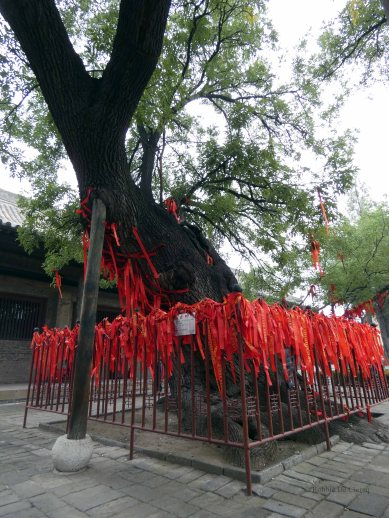 Shuangling Temple (17)