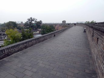 Stadsmuur (14)