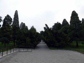 Temple of Heaven (54)
