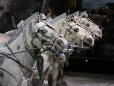 Terracotta Army (109)