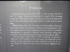 Terracotta Army (55)