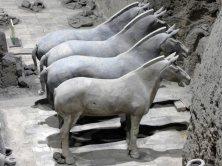 Terracotta Army (91)