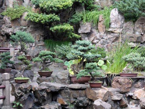 Yu Garden (13)