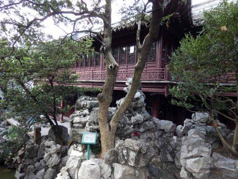 Yu Garden (25)