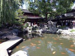 Yu Garden (29)