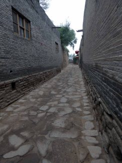 Zhangbi (50)