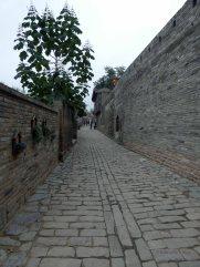 Zhangbi (56)