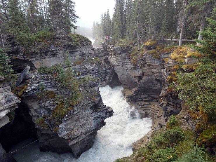 Athabasca Falls (6)