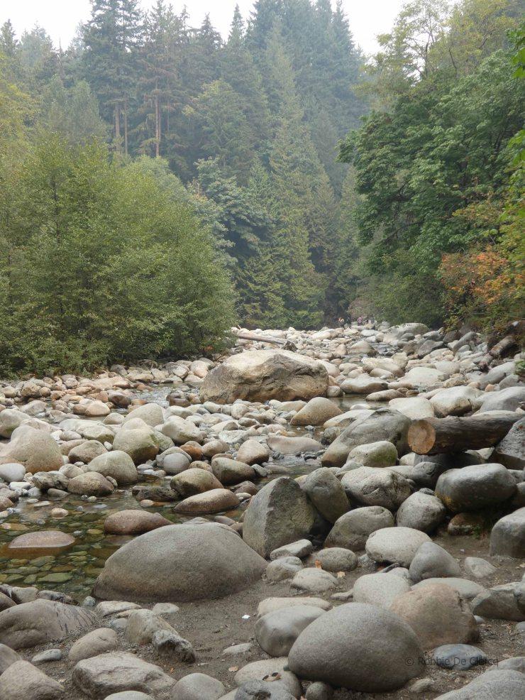 Lynn Valley (5)