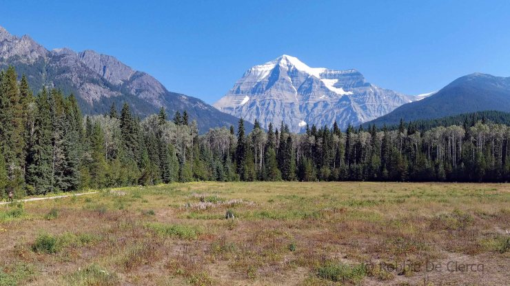 Mount Robson (10)