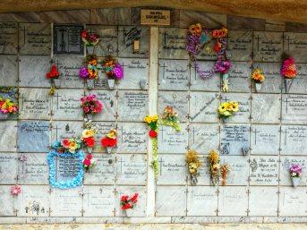 Cemeterio San Pedro (15)