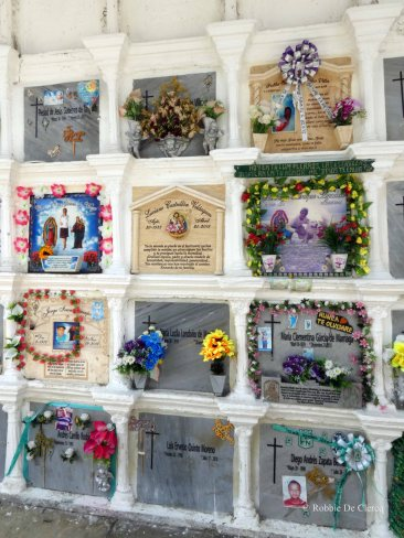 Cemeterio San Pedro (18)