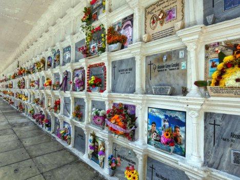 Cemeterio San Pedro (19)