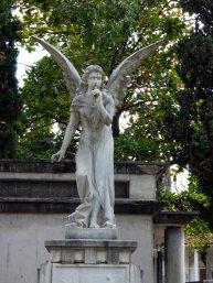 Cemeterio San Pedro (7)