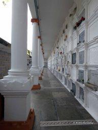Cemeterio San Pedro (9)