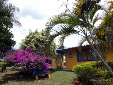 Jardin Botanico de Quindio (40)