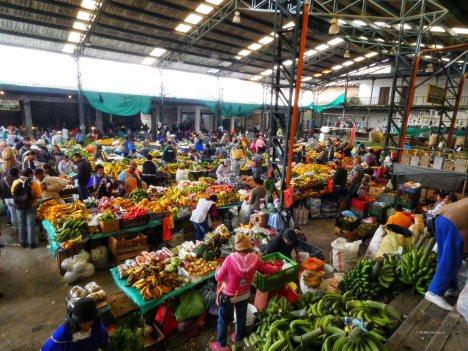 Markt (20)