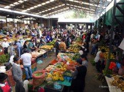 Markt (23)