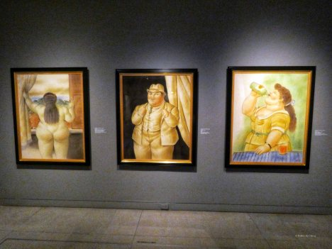 Museo Antioqiua (14)