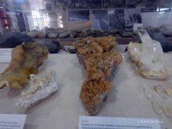 Museo El fossil (3)