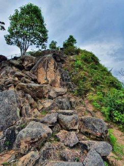 Parque Arqueologico (107)