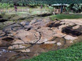 Parque Arqueologico (19)