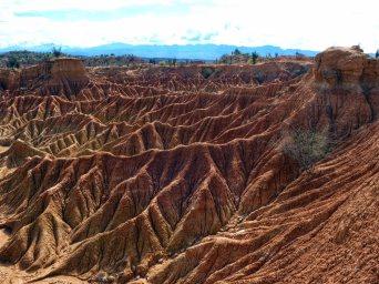 Tatacoa desert (13)