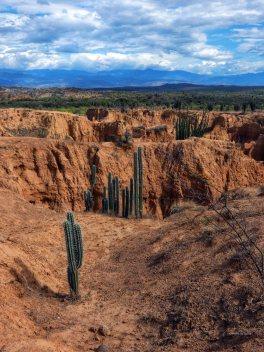 Tatacoa desert (15)