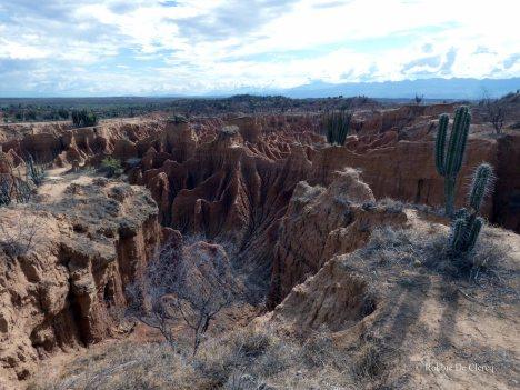 Tatacoa desert (16)