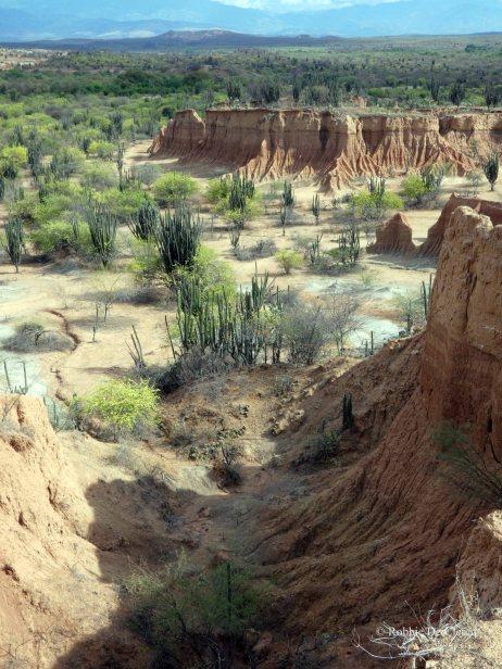 Tatacoa desert (19)