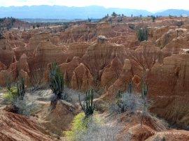 Tatacoa desert (21)