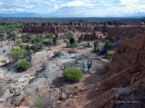 Tatacoa desert (23)