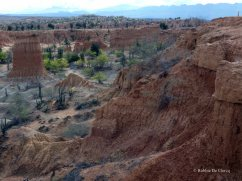 Tatacoa desert (25)
