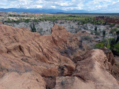 Tatacoa desert (26)