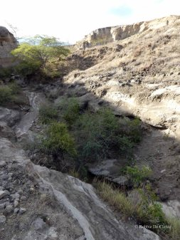 Tatacoa desert (31)