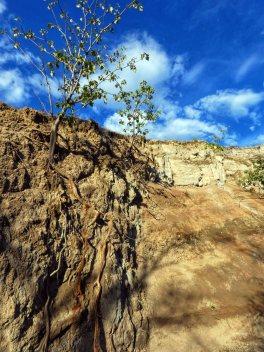 Tatacoa desert (33)