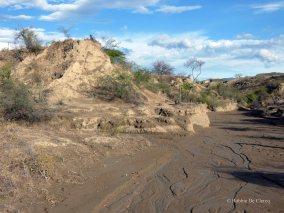 Tatacoa desert (38)