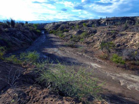 Tatacoa desert (41)