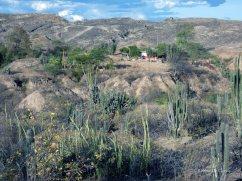 Tatacoa desert (44)