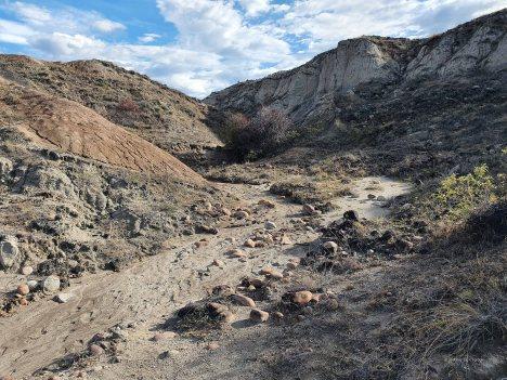 Tatacoa desert (52)