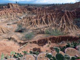 Tatacoa desert (6)