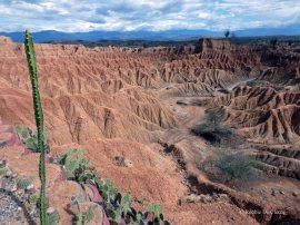 Tatacoa desert (7)