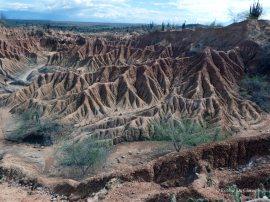 Tatacoa desert (8)